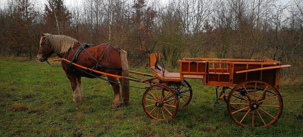 Uitvaart te paard